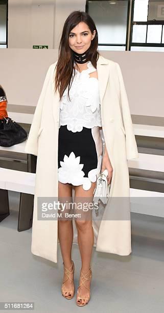 Doina Ciobanu attends the Antonio Berardi show during London Fashion Week Autumn/Winter 2016/17 at Brewer Street Car Park on February 22 2016 in...