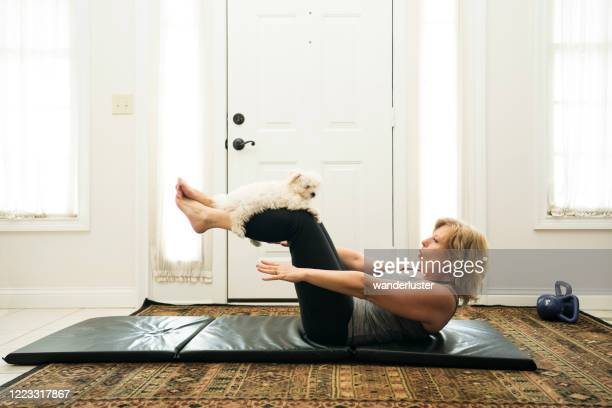 doing crunches at home with a puppy - picking up stock pictures, royalty-free photos & images