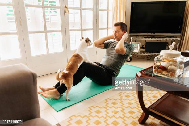 doing exercise at home with dog during coronavirus quarantine. covid-19. - home workout stock pictures, royalty-free photos & images