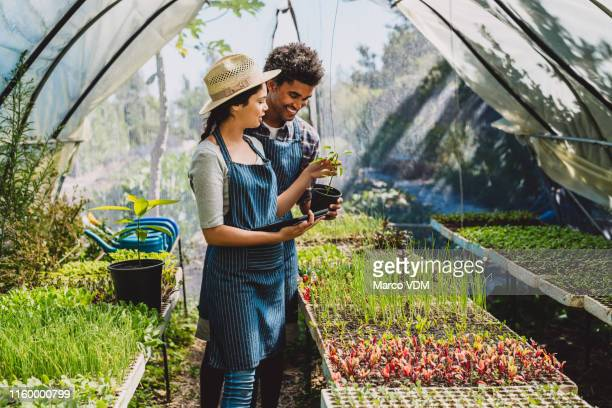 doing their part to build a more sustainable world - green fingers stock pictures, royalty-free photos & images