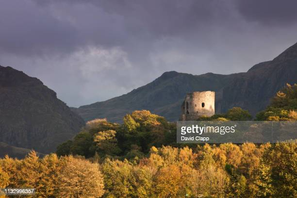 dolbadarn castle, snowdonia, wales - north wales stock pictures, royalty-free photos & images
