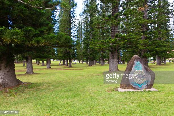 dole park in lanai city of lanai island of hawaii - lanai stock photos and pictures