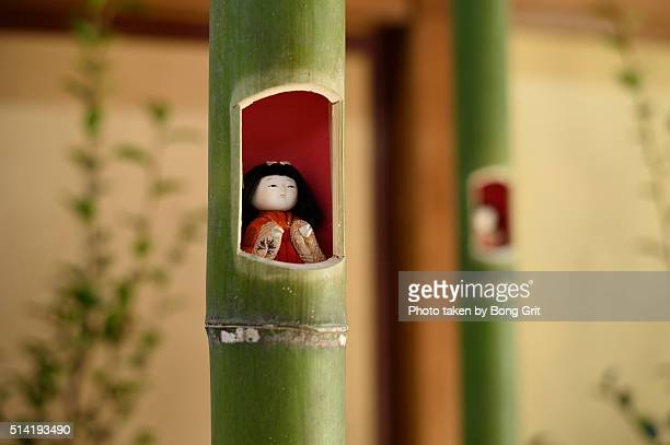 Doll in the bamboo