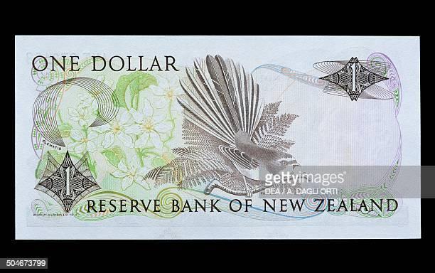 1 dollar banknote 19701979 reverse depicting a bird New Zealand 20th century