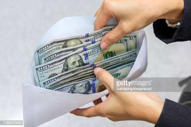dollar banknotes money in white envelope and business woman hand. american dollar bills in envelope. female hand with money in cash. exchange concept - wildlife reserve stock pictures, royalty-free photos & images