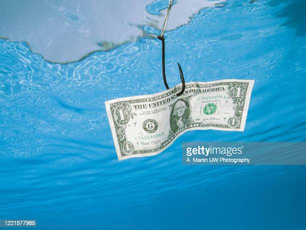 a dollar bill hanging over a hook underwater. business/opportunity concept. - falsenews stock pictures, royalty-free photos & images