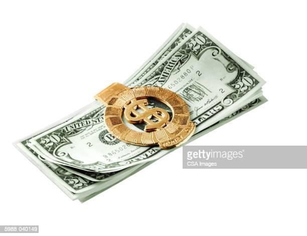 20 Dollar Bills in Money Clip