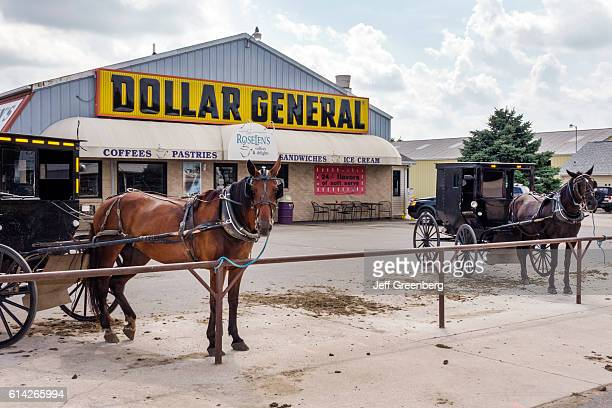 Dollar General Store parking lot Amish buggy horse parked on hitching post