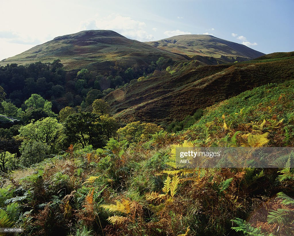Dollar Glen, Clackmannanshire, Scotland : Stock Photo