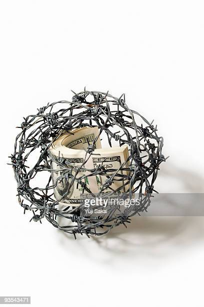 dollar in barbed wire