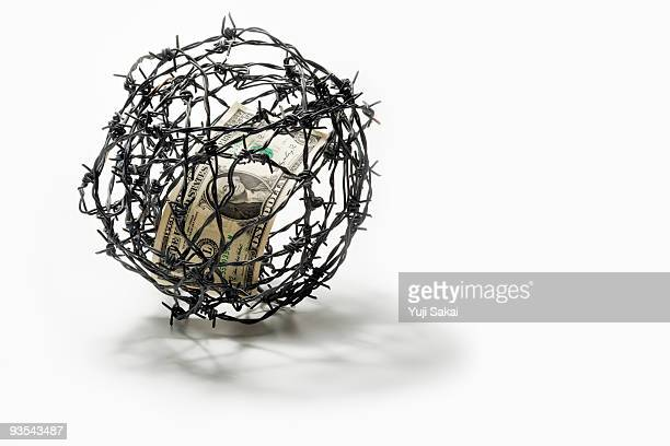 dollar in barbed wire - barbed wire stock pictures, royalty-free photos & images