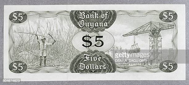 5 dollars banknote 19801989 reverse farmer and crane Guyana 20th century
