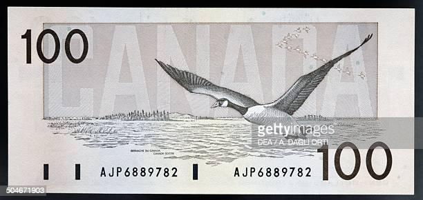 100 dollars banknote reverse Canada goose Canada 20th century