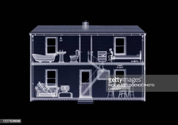 doll's house from front, x-ray - x ray image stock pictures, royalty-free photos & images
