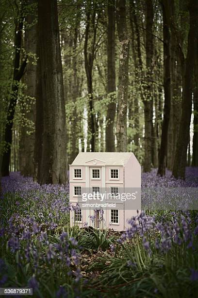 Doll's House In The Bluebell Wood