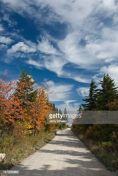 dolly sods, autumn, monongahela nf, wv - monongahela national forest stock photos and pictures