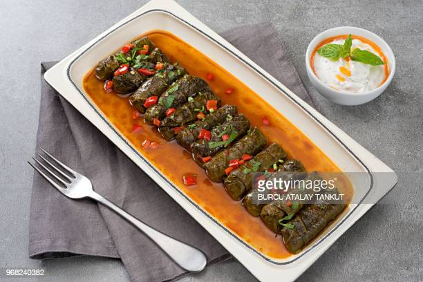 dolmades dish with tomato sauce - dolmades stock pictures, royalty-free photos & images