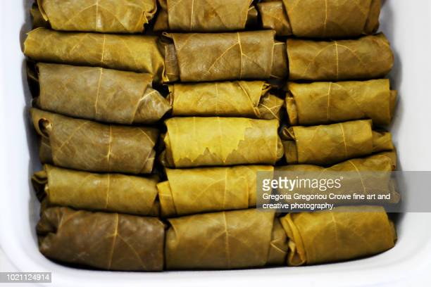 dolmathakia - stuffed grape leaves with rice and herbs - gregoria gregoriou crowe fine art and creative photography. stock-fotos und bilder