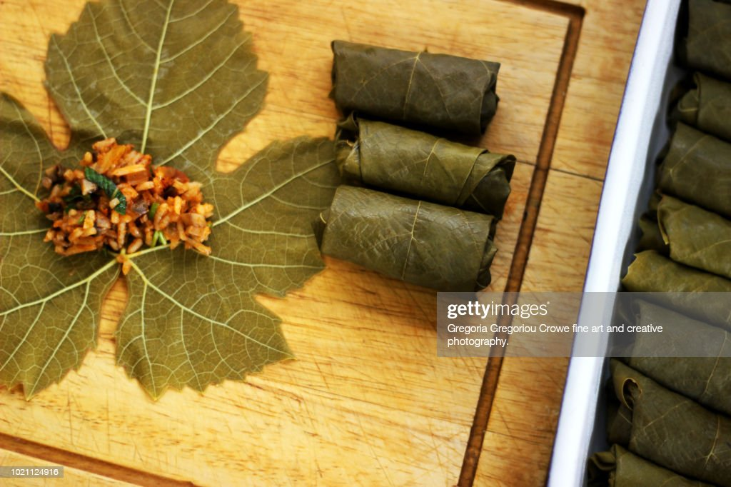 Dolmathakia - Stuffed Grape Leaves With Rice and Herbs : Stock Photo