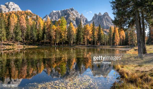 dolomite alps, south tyrol, italy, europe - beschaulichkeit stock pictures, royalty-free photos & images