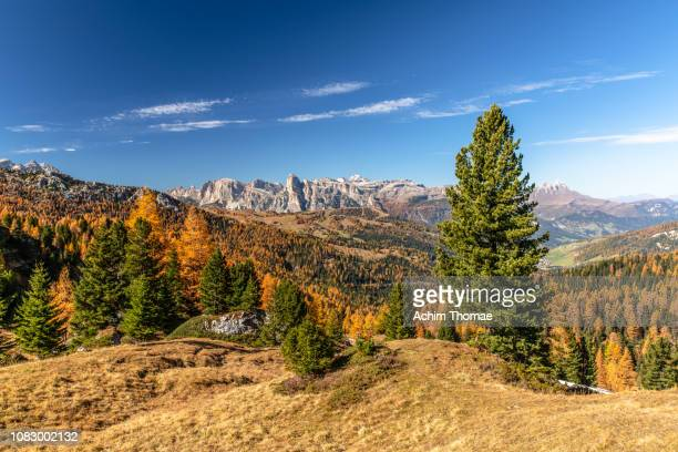 dolomite alps, south tyrol, italy, europe - spiegelung stock pictures, royalty-free photos & images