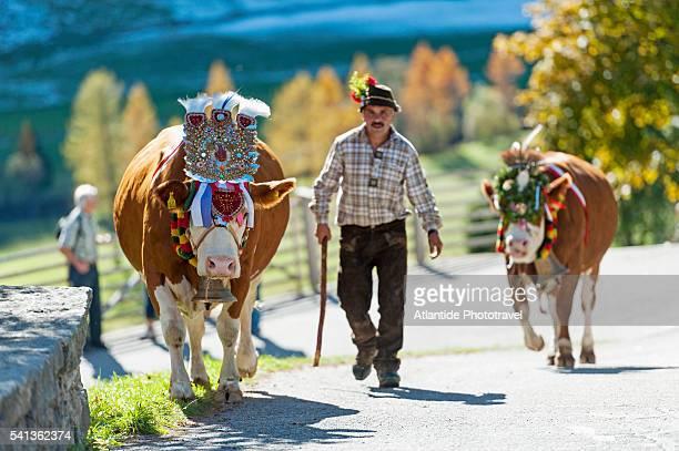 Dolomites - Riva di Tures, Transhumance Fair