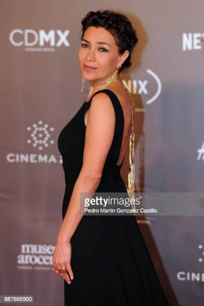 Dolores Hereida poses during Fenix Iberoamerican Film Awards 2017 at Teatro de La Ciudad on December 06 2017 in Mexico City Mexico