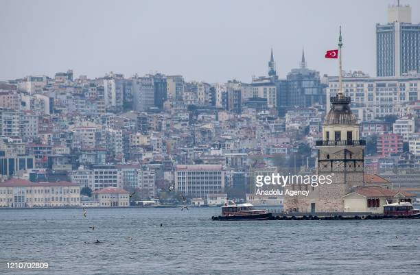 Dolphins swim in the Bosphorus as they migrate with the arrival of spring season in Istanbul, Turkey on April 23, 2020.