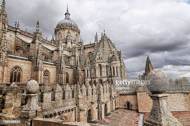 dome and roof of the salamanca new cathedral - ogphoto stock photos and pictures