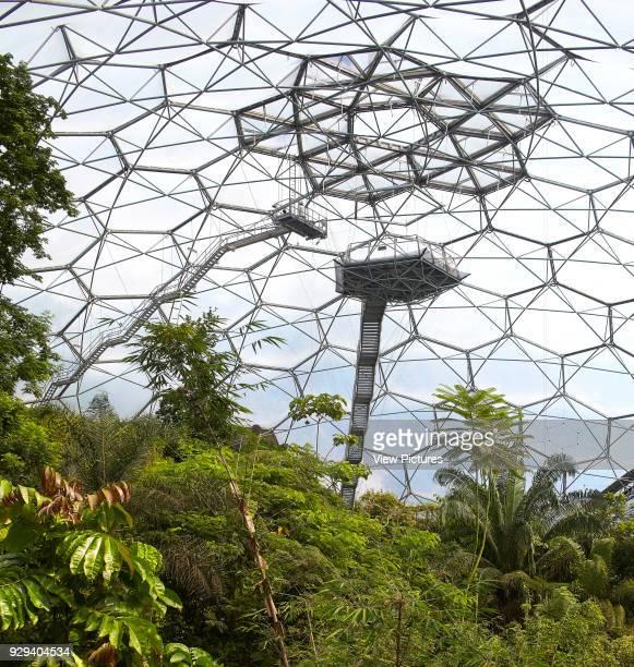 Dome interior with viewing platform and rainforest plants Eden Project Bodelva United Kingdom Architect Grimshaw 2016