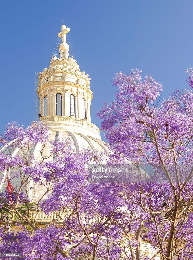 Dome of  Basilica in Flowers, Malta : Stock Photo