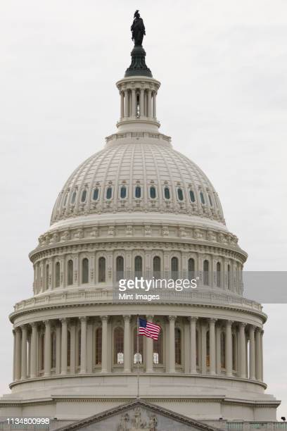 dome of the capitol building - congress stock pictures, royalty-free photos & images