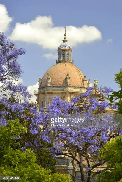 dome of the cathedral of jerez de la frontera - jerez de la frontera stock pictures, royalty-free photos & images