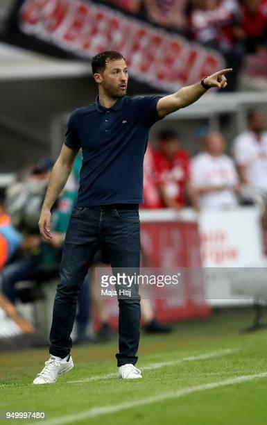 Domenico Tedesco head coach of Schalke gestures during the Bundesliga match between 1 FC Koeln and FC Schalke 04 at RheinEnergieStadion on April 22...