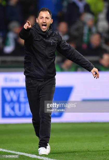 Domenico Tedesco, head coach of Schalke reacts during of the Bundesliga match between SV Werder Bremen and FC Schalke 04 at Weserstadion on March 08,...