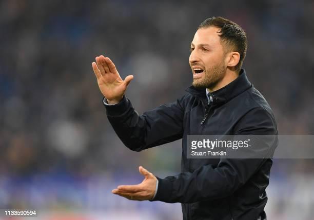 Domenico Tedesco head coach of Schalke reacts during the Bundesliga match between FC Schalke 04 and Fortuna Duesseldorf at VeltinsArena on March 02...