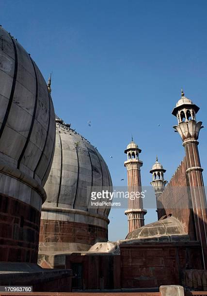 Domes Jama Masjid Delhi India