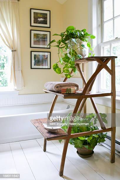a domestic bathroom, with white traditional bath, and wooden stand for towels and houseplants. - toilet planter stock pictures, royalty-free photos & images