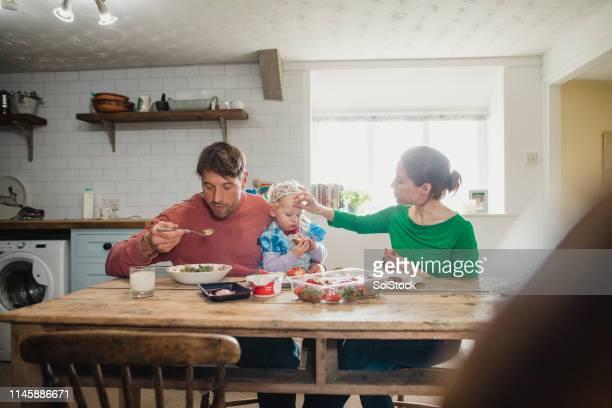 domestic bliss - domestic life imagens e fotografias de stock