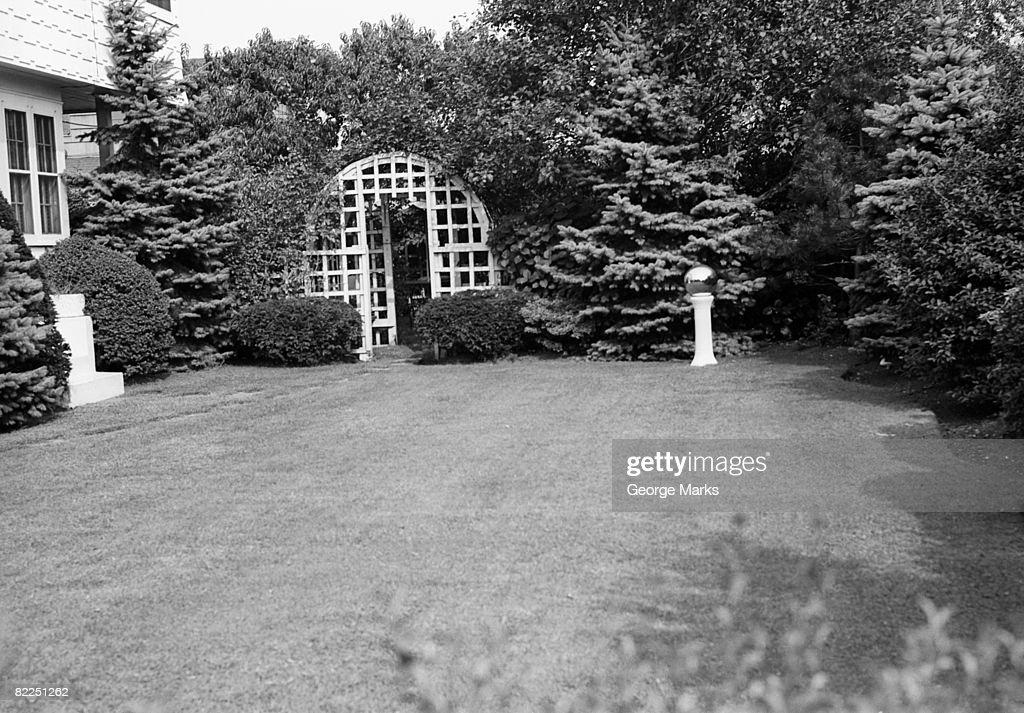 Domestic garden : Stock Photo