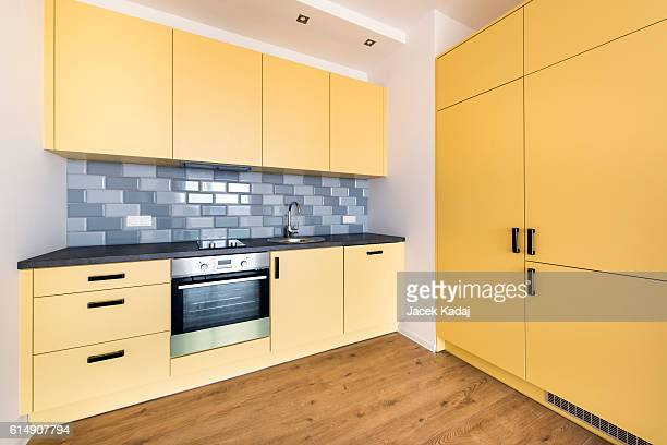 Domestic kitchen interior design