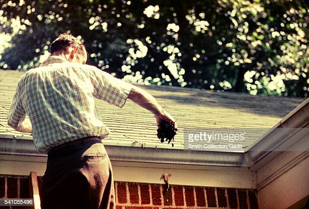 Domestic mosquitoes can breed in gutter drains 1975 Domestic species are those that breed close to human habitation Clogged roof gutters may contain...