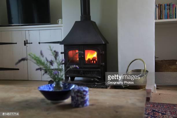 Domestic stove warm coal fire in domestic home, UK.