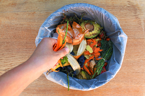 Domestic waste for compost from fruits and vegetables. Woman  throws garbage. 1057790090