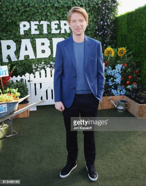 Domhnall Gleeson attends the photo call for Columbia Pictures' 'Peter Rabbit' at The London Hotel on February 2 2018 in West Hollywood California