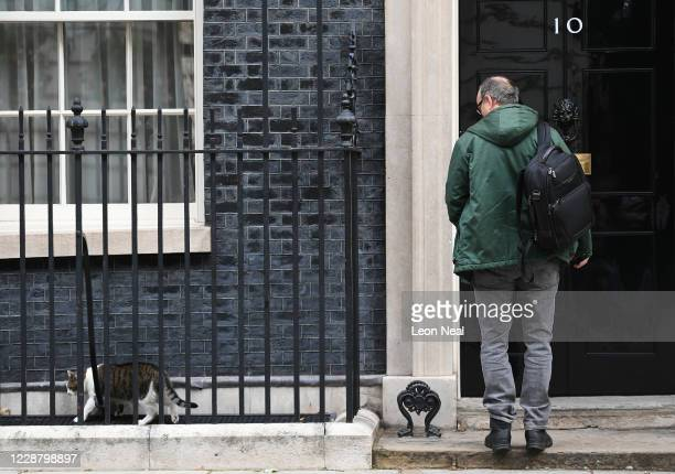 Dominic Cummings special adviser to UK Prime Minister Boris Johnson looks at Resident cat Larry as he arrives at number 10 Downing Street on...