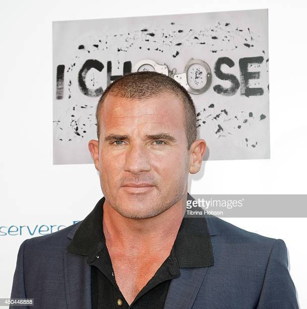 Dominic Purcell attends the screening of AnnaLynne McCord's 'I Choose' at Harmony Gold Theatre on June 10 2014 in Los Angeles California