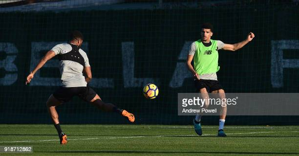 Dominic Solanke and Joe Gomez of Liverpool during a training session at the Marbella Football Center on February 15 2018 in Marbella Spain