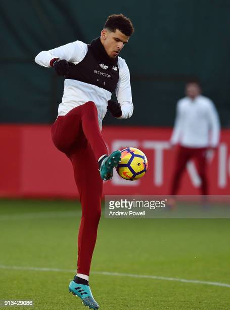 Dominic Solanke of Liverpool during a training session at Melwood Training Ground on February 2 2018 in Liverpool England