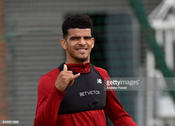 Dominic Solanke of Liverpool during the UEFA Champions League group E match between Liverpool FC and Sevilla FC at Anfield on September 13 2017 in...